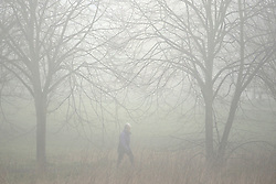 © Licensed to London News Pictures. 12/03/2016<br /> A woman walks through heavy fog in Foots Cray Meadows  in  Sidcup, Kent this morning. Photo credit: Grant Falvey