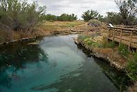 Crystal Spring, Ash Meadows National Wildlife Refuge, Nevada