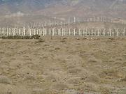 Wind energy farm in desert Palm Springs Southern California.