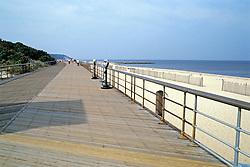 Northern Long Island Boardwalk