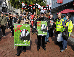 © Licensed to London News Pictures. 07/09/2013. Taunton, Somerset, UK.  Protest against the badger cull in Taunton.  Several hundred protesters marched in the city to Vivary Park.  The Government has licensed a pilot badger cull in parts of Somerset and Gloucestershire as part of efforts to reduce bovine tuberculosis in cows on farms.  07 September 2013.<br /> Photo credit : Simon Chapman/LNP