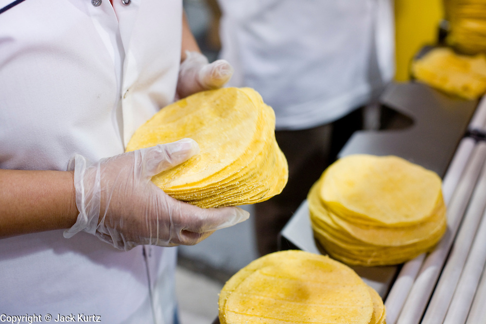 05 MAY 2008 -- PHOENIX, AZ: Corn tortillas are packed on the production line at La Canasta in Phoenix. La Canasta uses 20,000 - 25,000 pounds of corn daily to make almost two million tortillas. Josie Ippolito, President of La Canasta, said the price of the corn she buys has shot up more than 50 percent since November, 2007 and is expected to double by the end of this year. This in addition to the 200 percent increase in the price of wheat flour she uses in other products at La Canasta.   Photo by Jack Kurtz