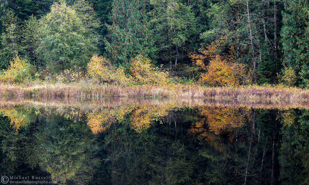 Reflections on the surface of Rolley Lake in Rolley Lake Provincial Park in Mission, British Columbia, Canada.
