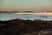 Bachas Beach on Santa Cruz Island, Galapagos Islands - Ecuador.