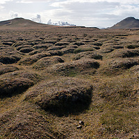 View on a hummocky ground in the Krafla Caldera. Hummocks are caused by debris avalanches.