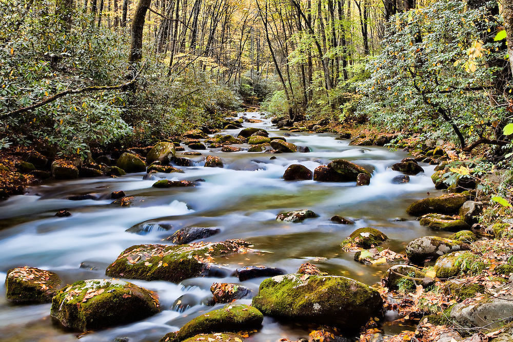 Streams within the Smoky Mountains National Park captured with slow shutter speeds to show the movement of water