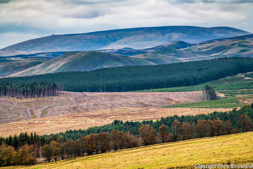 Carter Bar, Jedburgh, Scottish Borders, UK. 7th October 2018. Big Cheviot (815m) on the skyline from the Carter Bar on an overcast and cool day at the Anglo Scottish Border.