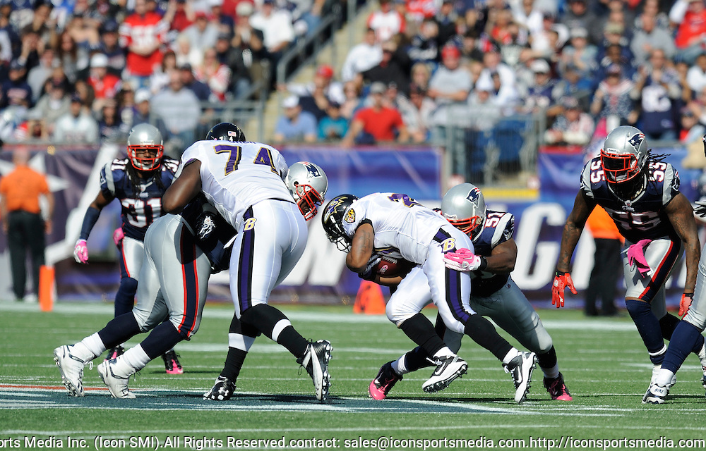 17 October 2010: Ravin running back Ray Rice during the New England Patriots game against the  Baltimore Ravens at Gillette Stadium in Foxborough, Massachusetts. Patriots win 23-20 in overtime.