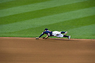 Minnesota Twins shortstop can't make a diving play against the Chicago White Sox on June 25, 2012 at Target Field in Minneapolis, Minnesota.  The Twins defeated the White Sox 4 to 1.  © 2012 Ben Krause