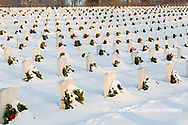 65095-02915 Wreaths on graves in winter Jefferson Barracks National Cemetery St. Louis,  MO
