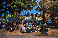 OUTDOOR CINEMA, Cal Anderson Park
