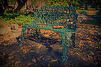Autumn Bench. Image taken with a Leica T camera and 23 mm f/2 lens. (ISO 100, 23 mm, f/4). Raw image processed with HDR Efex Pro and Photoshop CC 2014.