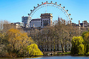 London Eye Wheel is seen from the St James's Park in London, Monday, March 23, 2020. After having encouraged people to practice social distancing to help prohibit the spread of Coronavirus, the British Government imposed further restrictions on Monday to enforce public adherence to their advice. (Photo/Vudi Xhymshiti)