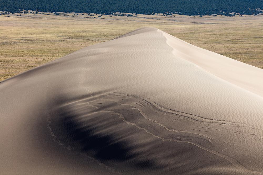 https://Duncan.co/textured-sand-dune