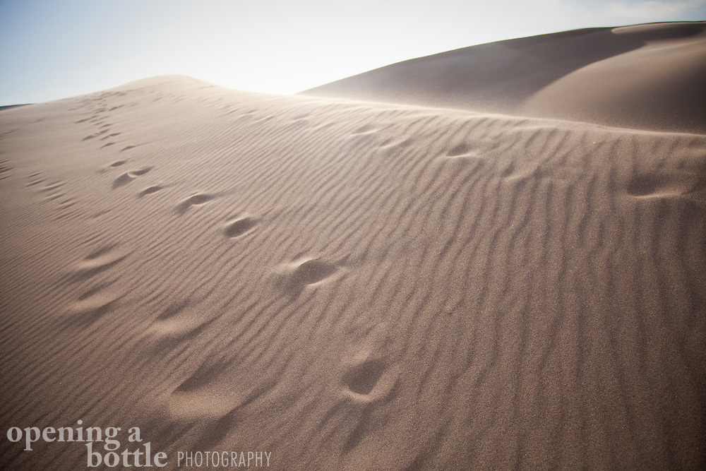 Foot steps climb one of the tallest dunes inside the dune field of Great Sand Dunes National Park and Preserve, Colorado.