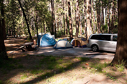 Campsite,Yosemite Valley, pines, campgrounds, Yosemite National Park, California, USA.  Photo copyright Lee Foster.  Photo # california121166