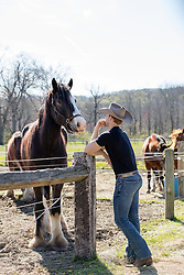 cowboy looking at a horse on a ranch