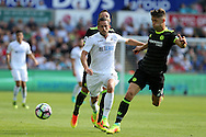 Gylfi Sigurdsson of Swansea city © challenges Gary Cahill of Chelsea. Premier league match, Swansea city v Chelsea at the Liberty Stadium in Swansea, South Wales on Sunday 11th Sept 2016.<br /> pic by  Andrew Orchard, Andrew Orchard sports photography.