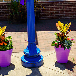 Phoenixville, PA, USA - June 14, 2020: Colorful flowers in planters are on display along the main street in the town.