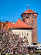 Baszta Senatorska, Królewski Zamek na Wawelu w Krakowie.