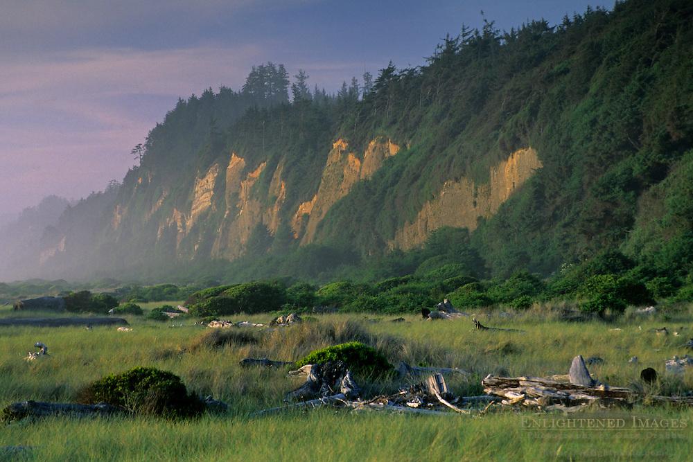 Gold Bluffs Beach, Prairie Creek Redwoods State Park, Humboldt County, CALIFORNIA
