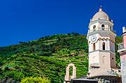 Santa Margherita di Antiochia Church and vineyards, Vernazza, Cinque Terre, Liguria, Italy