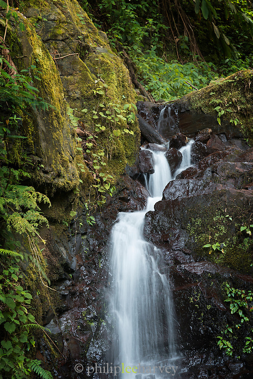 Waterfall next to the road that leads to the Cloud forest, Manu, Peru, South America