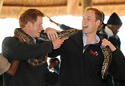 File photo dated 15/6/2010 of Prince Harry and Prince William posing with a rock python during a visit to the Mokolodi Nature Reserve in Gabarone, Botswana.