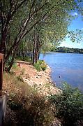Hidden beach on Cedar Lake woman with dog swimming.  Minneapolis Minnesota USA