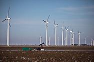 Pump jack in cotton field in front of wind turbine field in Roscoe Texas.