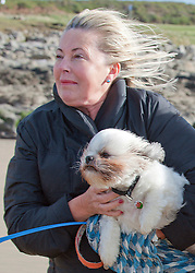 © Licensed to London News Pictures. 21/10/2014. Mid Glamorgan, Wales, UK. Carmel from Ireland struggles in the strong wind whilst walking on the beach at Rest Bay carrying shih tzu dog Raffi. The tail end of Hurricane Gonzalo arrives on the Welsh coast bringing storm force winds and heavy rainfall. Photo credit: Graham M. Lawrence/LNP