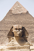 The Great Sphinx of Giza is a limestone statue of a reclining sphinx, a mythical creature. It stands on the Giza Plateau<br /> Khafre pyramid in background