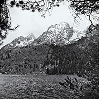 Teton/Yellowstone '13<br /> edited 9/13/13<br /> converted to B%W 9/13/13<br /> printed 3/17/14