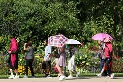© Licensed to London News Pictures. 24/08/2019. London, UK. Tourists shelter from the sun beneath umbrellas in London's St James's Park as the hot weather continues. According to the Met Office, the temperatures are forecast to reach between 31 and 33 degrees celsius in the south-east of England. Photo credit: Dinendra Haria/LNP