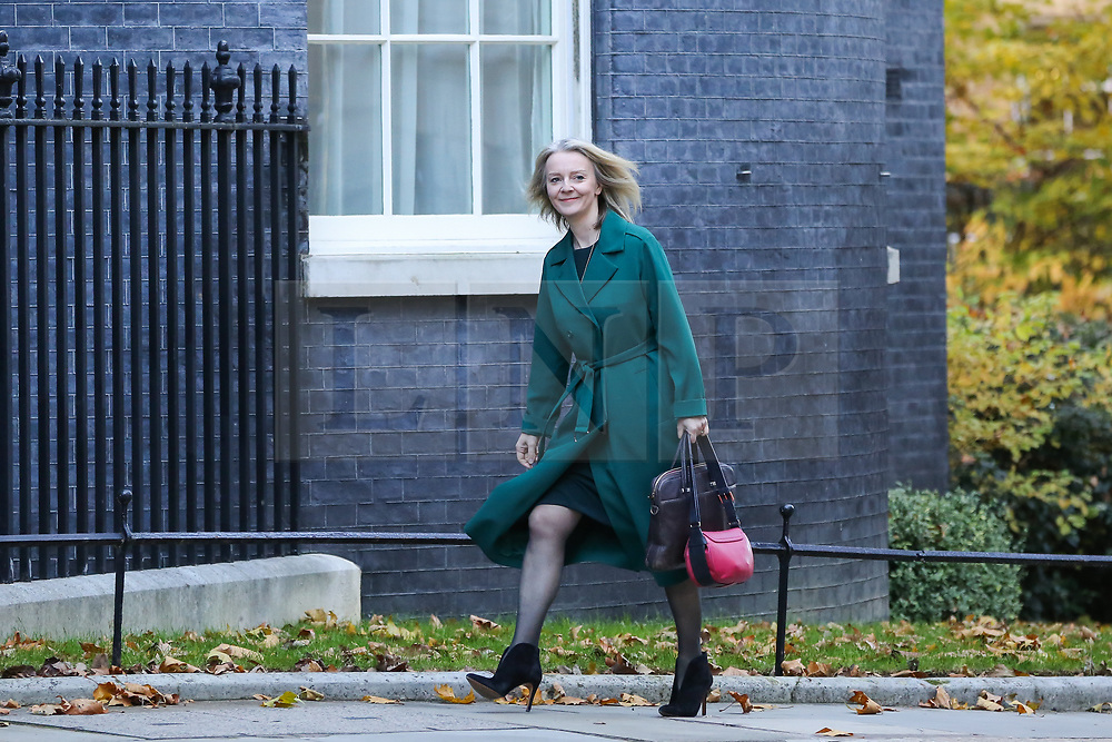 © Licensed to London News Pictures. 14/11/2018. London, UK. Liz Truss - Chief Secretary to the Treasury  departs from Downing Street attend Prime Minister's Questions (PMQs) in the House of Commons. Photo credit: Dinendra Haria/LNP