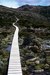 Australia, Tasmania, Boardwalk trail over soggy, fragile plants of Mount Field National Park.