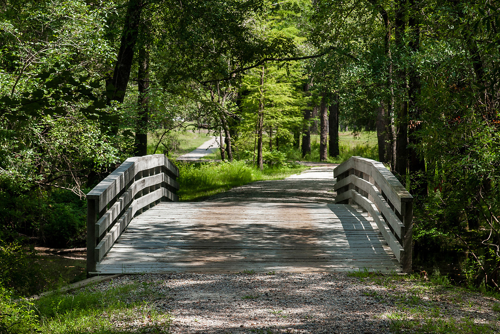 The restored bridge where a pivotal Revolutionary War battle happened along the History Trail at Moores Creek National Battlefield in Currie, North Carolina on Friday, August 13, 2021. Copyright 2021 Jason Barnette