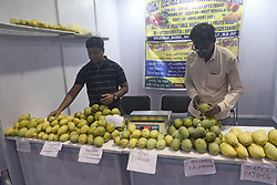 June 15, 2017 - Kolkata, West Bengal, India - Seller sorted mangoes at Bengal Mango Festival.The West Bengal Food Processing Industry Department and Horticulture Department organized The Bengal Mango Utsav 2017 at Milan Mela. (Credit Image: © Saikat Paul/Pacific Press via ZUMA Wire)