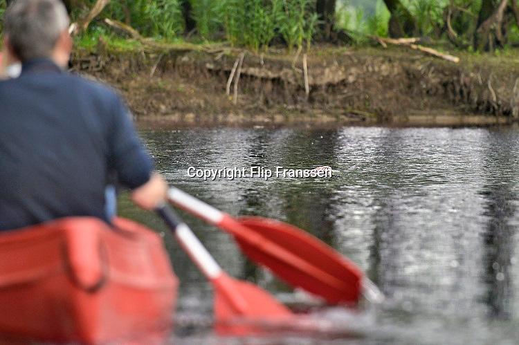 Nederland, Kekerdom, 3-6-2017Een bever bij de ingang van zijn burcht. Beversafari met kano in de Millingerwaard. Staatsbosbeheer maakt tochten per kano zodat belangstellenden de natuur in de Millengerwaard echt kunnen beleven. Doel is om bevers te spottenOm het water dat via Lobith binnenkomt goed te verdelen over het Pannerdensch Kanaal en de Waal én om de waterstand te laten dalen in tijden van hoog water, is de Millingerwaard verruimd voor een betere waterveiligheid. Er is een geulenpatroon gegraven bestaande uit kwelgeulen en een grote stroombaangeul. Ruimte voor de rivier de Waal.Foto: Flip Franssen