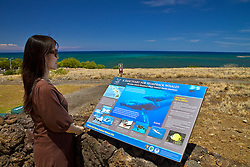 woman visitor looking at Hawaiian Islands Humpback Whale National Marine Sanctuary sign, Puukohola Heiau National Historic Site, Kawaihae, Kohala, Big Island, Hawaii, USA, Model Released - MR#: 000103