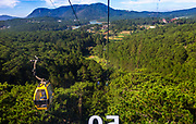 POV looking out the window of a cable car with a wide view of another cable car and the lake with trees and mountains.