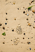 Footprint in the sand, Cley Beach, Norfolk, United Kingdom