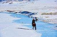 Mongolie, province de Bayan-Olgii, chasseur à l'aigle Kazakh, chasse à l'aigle royal en hiver, dans les monts Altai // Mongolia, Bayan-Olgii province, Kazakh eagle hunter, Golden Eagle hunting in Altai mountains, winter season