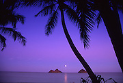 Moonrise, Lanikai, Oahu, Hawaii<br />