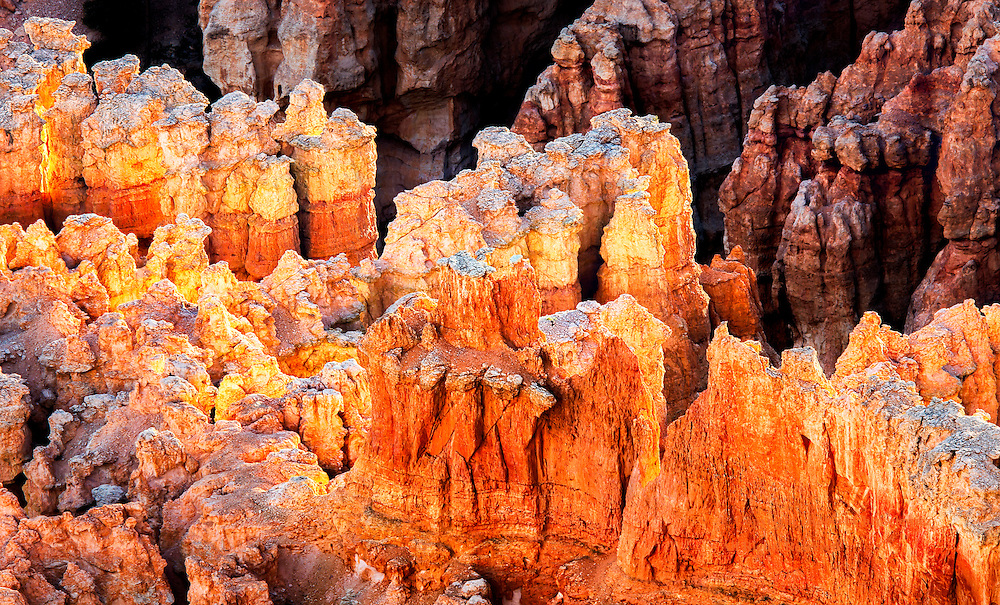 Bryce Point Transformation: Hoodoos come to life in the early morning light as the muted, dark reds transform to become yellow, orange or white at Bryce Point in Bryce National Park, Utah, USA.