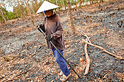 09 APRIL 2010 - NAKHON, PHANOM, THAILAND: UDOM, a woman in her 60's, burns brush out of her land to prepare it for planting potatoes. She said this is the first year she's planted potatoes and she is doing so because they require less water than rice, her preferred crop. According to people who live here, the river is at its lowest point in nearly 50 years. Many of the people who live along the river farm and fish. They claim their crops yields are greatly reduced and that many days they return from fishing with empty nets. The river is so shallow now that fisherman who used to go out in boats now work from the banks and sandbars on foot or wade into the river. In addition to low river levels The Isan region of Thailand is also in the midst of a record drought and heat wave. Farmers have been encouraged to switch from rice to less water intensive crops and to expect lower yields. Farmers here rely more on rain fall than irrigation to water their crops.   PHOTO BY JACK KURTZ
