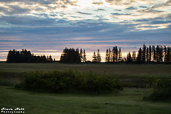 A few from the Silver Salmon Creek Lodge across the meadow looking toward the Cook Inlet
