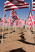 Vertical of Memorial Day Field of Flags, Questa, New Mexico<br />