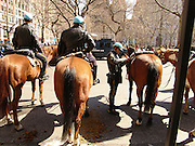 Mounted police man on horseback waiting during demonstration New York City.