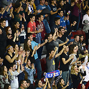 Anadolu Efes's supporters during their Turkish Airlines Euroleague Basketball Group A Round 5 match Anadolu Efes between Real Madrid at Abdi ipekci arena in Istanbul, Turkey, Thursday, November 14, 2014. Photo by Aykut AKICI/TURKPIX